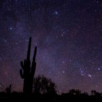 Cactus and stars in Arizona